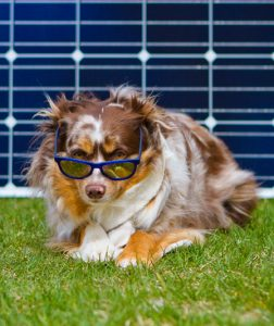 Solar Panel Financing Missoula Montana